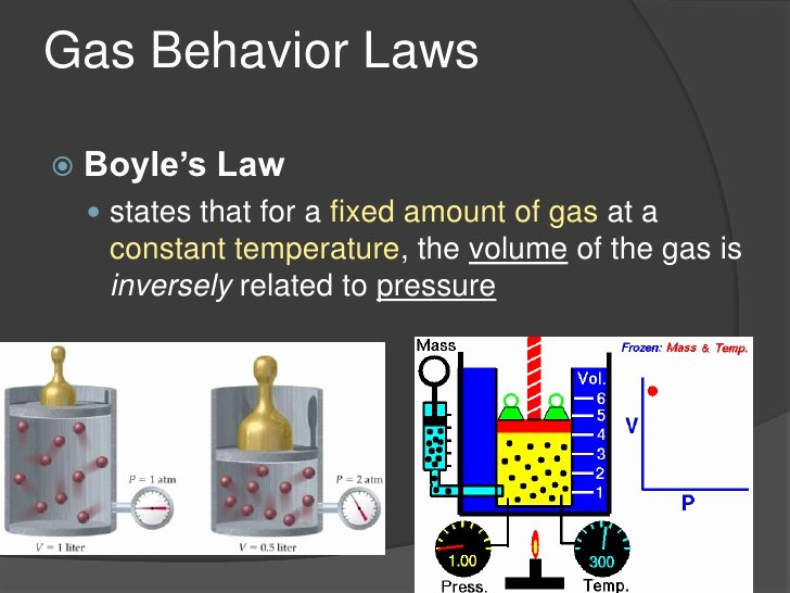what is an example of instinctive behavior