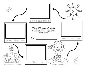 example of water cycle in science