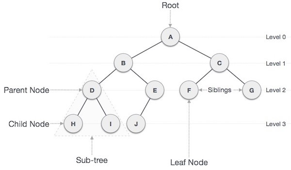 properties of binary tree with example
