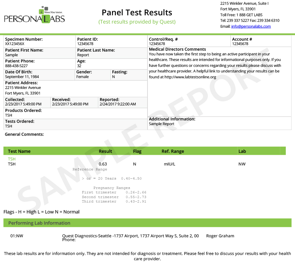 lab report example results section