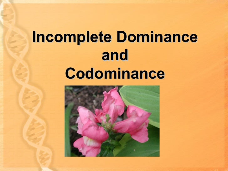 an example of incomplete dominance