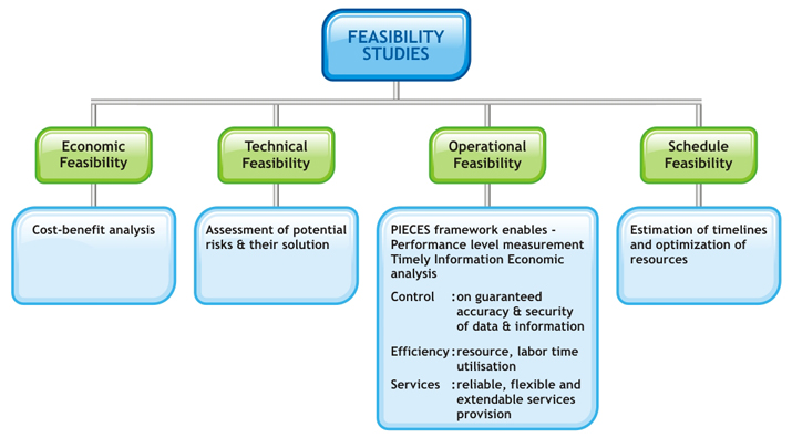 management information system example case study