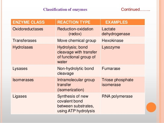 what is an example of classification
